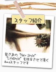 """スタッフ紹介 皆さまの""""Hair Style""""""""Life Style""""を担当させて頂くAuraスタッフです"""